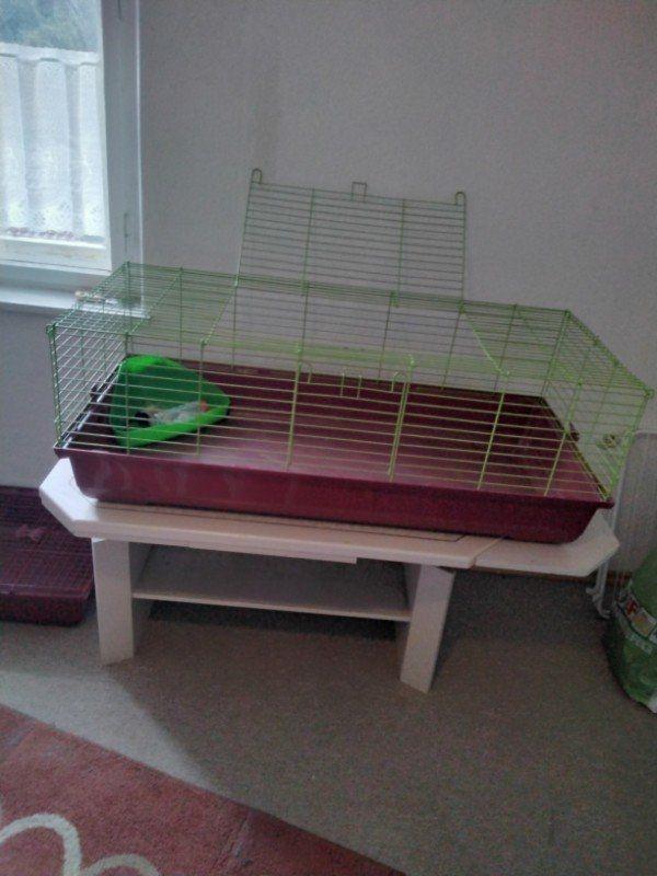 Dringend zu verkaufen hasen oder meerschweinchen käfig groß