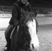 Langfristige Reitbeteiligung Reiter sucht Pferd