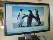 Dell Monitor 21 6 Zoll