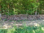 Brennholz Eiche und Buche