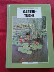 Ratgeber für Gartenteiche