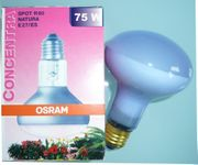OSRAM Pflanzenlicht E27 Spot R80