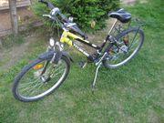 Mountainbike MTB Fahrrad Rad für