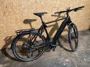 Pedelec E-Bike Herrenfahrrad RH 60cm