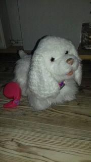 Spielzeug Hund von Hasbro