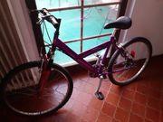 Jungend Fahrrad