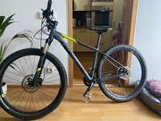 Mountainbike Cube Attention SL grau