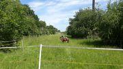 Offenstall frei Stall Box Pferd