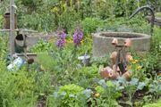 Suche Garten Weinberg oä in