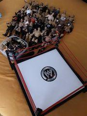 Wresling Figuren WWE WWF plus