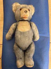 Teddybär antik