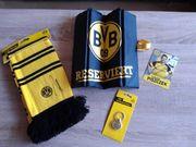 BVB Fanartikel