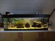 Aquarium unbefüllt und Zubehör