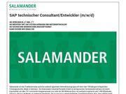 SAP technischer Consultant Entwickler m