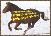 Kurs Pferdeerziehung