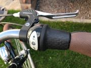 Damenfahrrad pegasus Bici italia