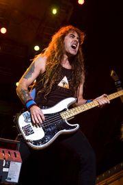 Bassist In Basser In gesucht
