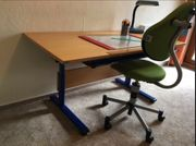 Paidi-Schreibtisch Stuhl Büffelland