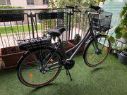 28 E-Bike Rosendaal2 Lady grau