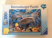 Puzzle 300 XXL Ravensburger No
