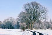 Winterdienst Gewerbe und privat ab