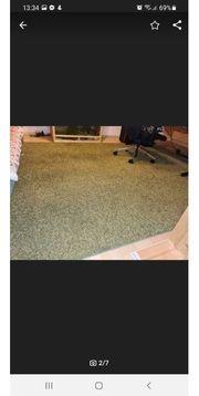 Teppich grün gut enthalten 240x340