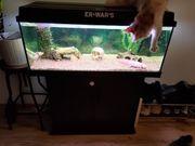Axolotl Aquarium mit Unterschrank und