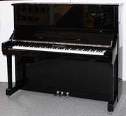 Klavier Weinberg U 131 T
