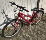 City- und Trekking Rad Shimano