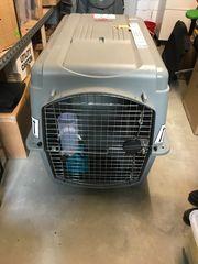 Hunde-Transportbox IATA