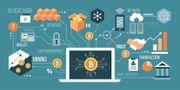 Software Entwickler Blockchain m w