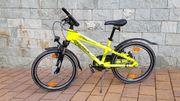 Kinderfahrrad Pegasus Avanti Sport 20