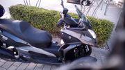 Trike Quadro D 350