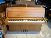 Rippen Mod 105 Klavier Garantie
