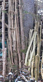Eibenholz-Stücke zum Drechseln u ä