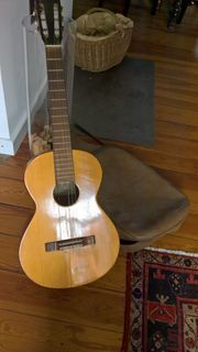Gitarre mit Transporthülle gutes Instrument