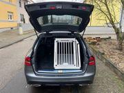 KFZ-Hundebox Mercedes-Benz C-Klasse T-Modell