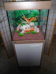 EHEIM Scubacube 125 Würfel-Aquarium Kombination