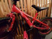 Kinder Fahrrad 16 zolö