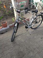 Fahrrad 28 Zoll Marke Pegasus