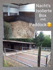 Paddockbox Frei