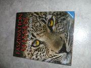 Faszination Wissen Ravensburger Buch Tiere