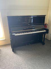 Klavier Steinway sons K 132