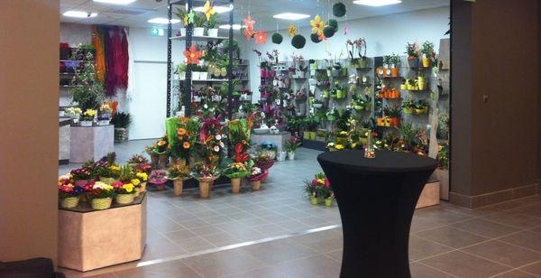 Ladeneinrichtung Blumen Floristik Blumenladen Einrichtung