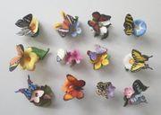 Schmetterlinge der Welt Franklin Mint