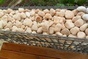 400 Kilo Steine aus 16