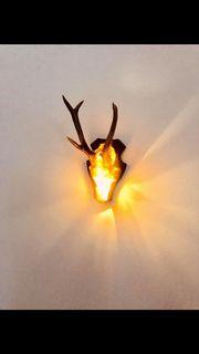 Wandleuchte beleuchtetes Rehgehörn