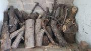 Holz Stämme und Balken