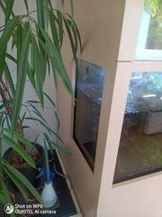 Aquarium 430 Liter