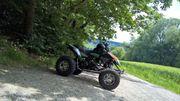 EGL Mad Max 250ccm